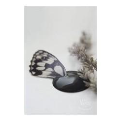 Black Velvet Vintage Paint